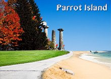 Parrot Island Collage